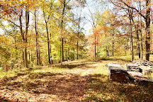 Visit Sandy Bottom Trail Rides on your trip to Marshall