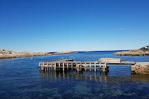 Bicheno Penguin Tours, Bicheno, Australia