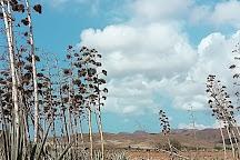 Playa de los Genoveses, Cabo de Gata, Spain