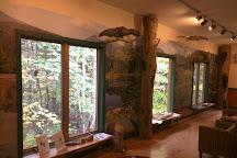 Adirondack Interpretive Center at SUNY ESF, Newcomb, United States