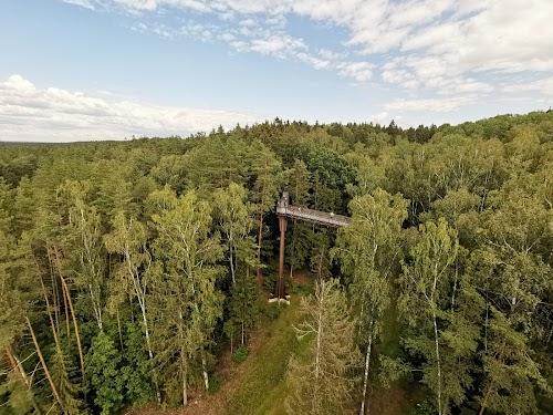 Treetop walking path
