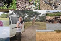 Safari 2 Gorilla Tours, Kampala, Uganda