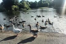 Verulamium Park, St. Albans, United Kingdom
