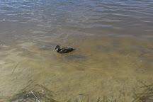 Lake Sambell Reserve, Beechworth, Australia