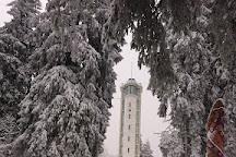 Observation Tower on Suur Munamagi, Haanja, Estonia