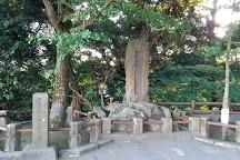 Shiroyama Park, Kirishima, Japan