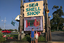 Shell We Golf, Rehoboth Beach, United States