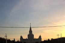 Lomonosov Moscow State University, MSU Institute of Mechanics, Moscow, Russia