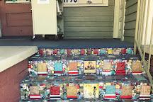 Echo Vintage Books & Vinyl Records, Fort Myers, United States