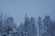 Shaman Huskies, Rovaniemi, Finland