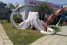 India Seashell Museum, Mahabalipuram, India