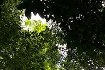 El Canto Waterfall, La Fortuna de San Carlos, Costa Rica