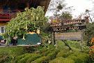 Sendero Los Quetzales (The Quetzales Trail)
