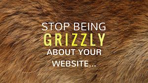 The Smart Bear Websites