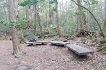 Nagaike Shinsui Park, Yamanakako-mura, Japan