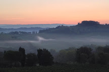 Guardastelle Vineyard, San Gimignano, Italy