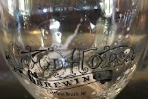 Good Hops Brewing, Carolina Beach, United States