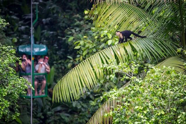 Rainforest Adventures Braulio Carrillo