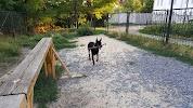 Площадка для Собак, улица Комсомольский Спуск на фото Таганрога