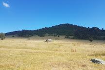 Tidbinbilla Nature Reserve, Australian Capital Territory, Australia