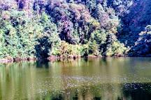 Parque Nacional Braulio Carrillo, San Jose, Costa Rica