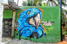 Blue Parrot, Playa del Carmen, Mexico