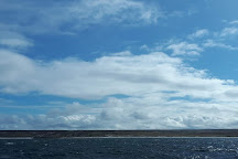 Kidney Cove Tours, Stanley, Falkland Islands