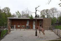 Krakow Zoo (Ogrod Zoologiczny), Krakow, Poland
