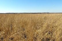 Prairie State Park, Mindenmines, United States