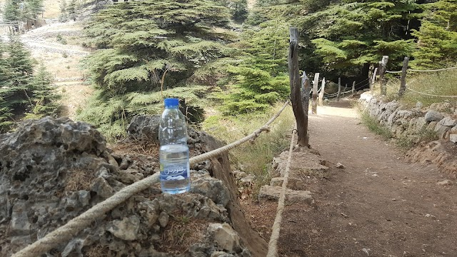 Tannourine Mineral Water
