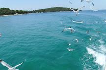 Brijuni Islands, Rovinj, Croatia