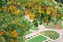 Botanical Garden, Cluj-Napoca, Romania