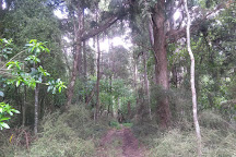 Mount Stewart Reserve, Taihape, New Zealand
