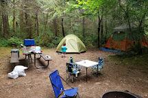 Potlatch State Park, Shelton, United States