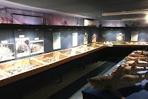 Musee des Coquillages Et de la Mer, Le Diamant, Martinique