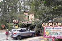 Canopy San Lorenzo, San Ramon, Costa Rica