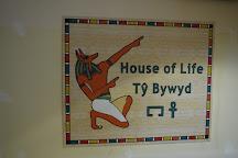 Egypt Centre, Swansea, United Kingdom