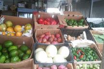 Immokalee State Farmers' Market, Immokalee, United States