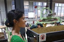 Oak Ray Tea Factory & Museum, Ramboda, Sri Lanka
