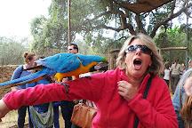 Zoo de Castellar, Castellar de la Frontera, Spain