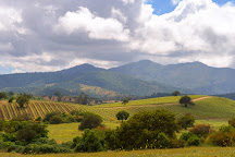 Matetic Vineyards, Lagunillas, Chile