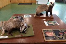 British Wildlife Centre, Lingfield, United Kingdom