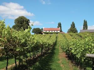 Three Choirs Vineyards Gloucestershire