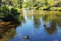 Windsor Great Park, Windsor, United Kingdom