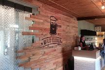 Wild Clover Breweries, Stellenbosch, South Africa