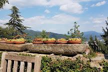 Orto Botanico di Bergamo Lorenzo Rota, Bergamo, Italy