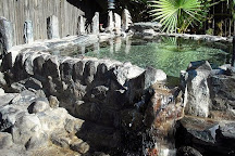 El Dorado Hot Springs, Tonopah, United States