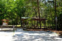 Dunns Creek State Park, Pomona Park, United States