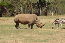 Werribee Open Range Zoo, Werribee, Australia