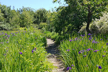Quarryhill Botanical Garden, Glen Ellen, United States